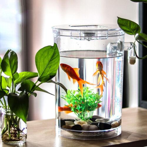 Creative Ecology Mini LED Fish Tank Luminous Glass Tank Aquarium Fish Tank 11