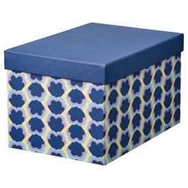 IKEA Storage box with lid-18x25x15cm
