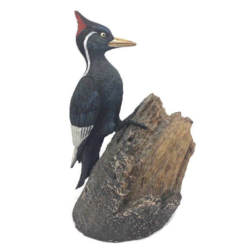 🔴 Ma Hai Feng Ivory Billed Woodpecker The Nature Company Limited Edition