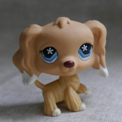 "LPS COLLECTION LITTLEST PET SHOP Blue Eyes Cocker DOG RARE TOY 2"" #748"
