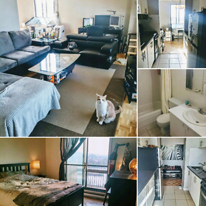 BIG 3 1/2 ALL INCLUDED RENOVATED LONGUEUIL METRO 23RD FLOOR