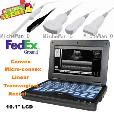 Humanvet Ultrasound Scanner Portable Laptop Machine Digital Probe Usa Fedex