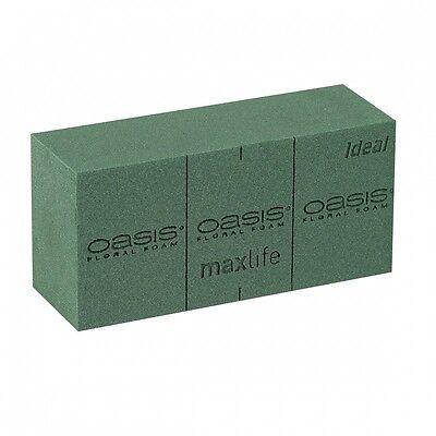 OASIS® IDEAL Steckschaum Steckmasse Steckschwamm Frisch Nass Ziegel 23x11x8cm