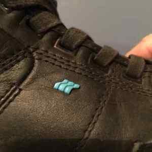 Box Fresh Shoes
