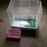 Pet Cages and supplies