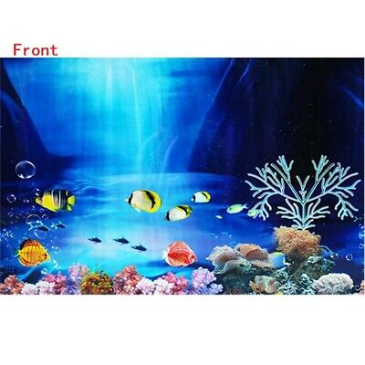 Double Sided Aquarium Ocean Landscape Poster Fishes Tank Background -