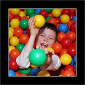 Party Host /Entertainer for Children's Indoor Play Centre