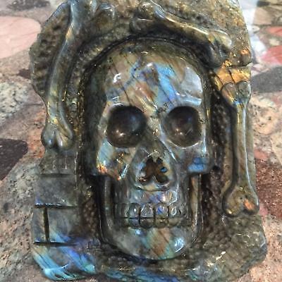 """8.1""""Natural Huge Labradorite Carved Crystal Skull Realistic Skeleton Healing#101"""