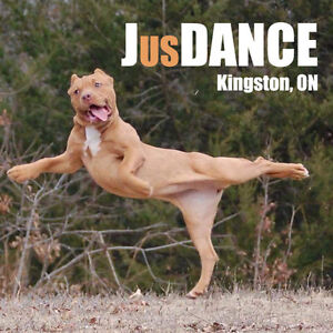 JusDance Dance Events Kingston Kingston Area image 1