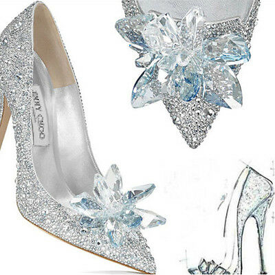 Cinderella S Shoe Butterfly