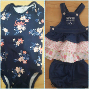 Baby Girl Clothing (Very Gently Used)