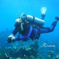 scuba diving course and certification