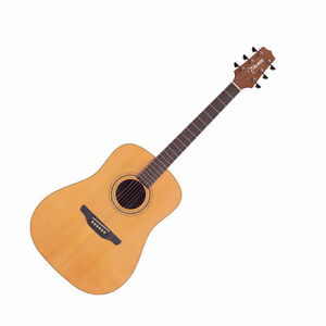 Takamine Acoustic 530SS