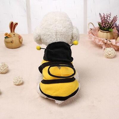 l Apperal Welpen Hunde Katze Fleece Hoodies Kleidung Kostüm (Katze Biene Kostüm)