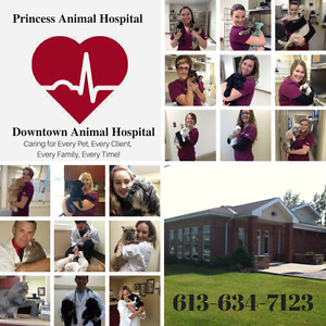 Come FEEL the Differnece! Pincess & Downtown Animal Hospitals!