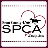 Brant County SPCA Thrift Shop