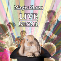 Birthday Magic Show With+Real Rabbit $249.99