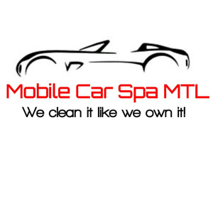 Professional Detailing Services
