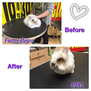 Fuzzy Pawz Professional Pet Grooming