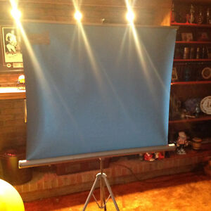 Projection Screen Windsor Region Ontario image 1