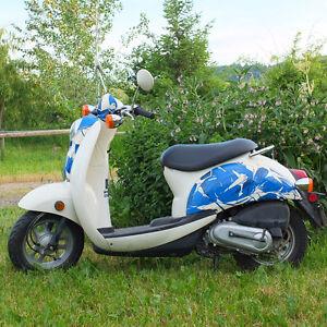 2006 Honda Jazz 50cc