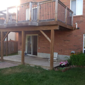 Walkout Basement house apartment for rent only $1250