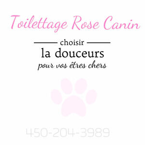 Toilettage Rose Canin ♡
