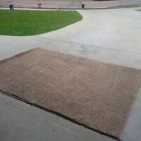 Area rug -Shap style- 6ft x 8ft - light brown-great shape