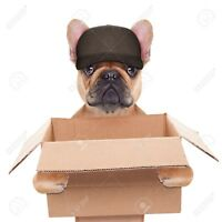 BullDog Movers Flat Rate Moving done right!