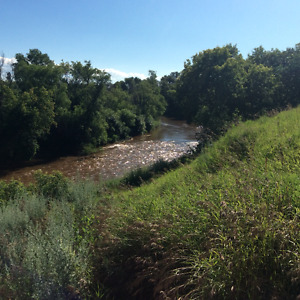 1/4 mile river bank property