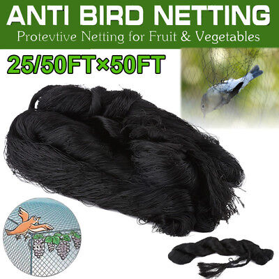 Protection Netting - 25'/50' Anti Bird Netting Pond Net Protect Tree Crops Plant Fruit Garden Mesh