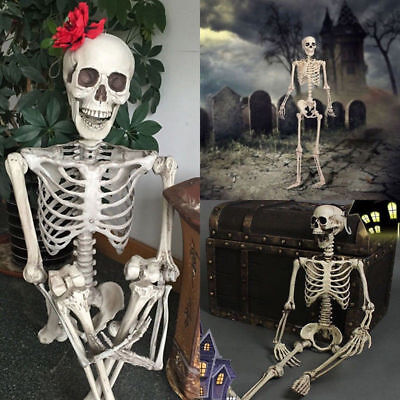 Halloween Poseable Human Skeleton 90cm Full Life Size Party Prop Decoration