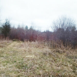 0 Walnut St, Omemee - 3 Parcels Mixed Zoning