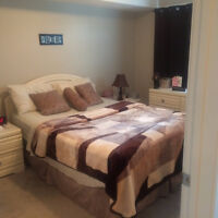 Luxurious  fully furnished one bedroom condo for rent