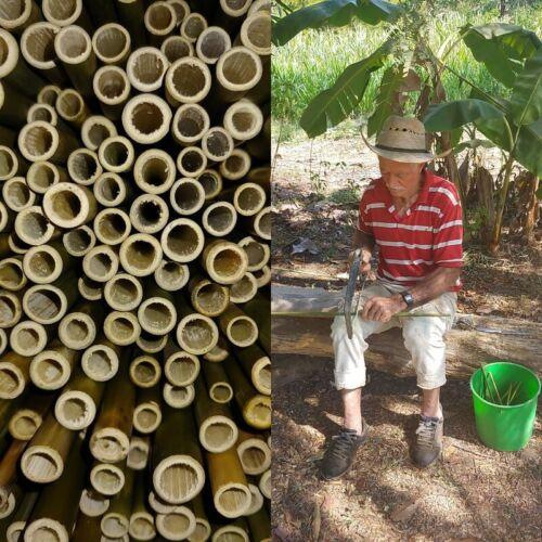 Handmade bamboo straws, 8 count.