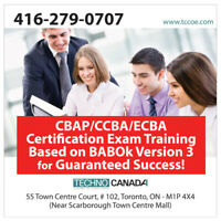 Business Analysis Training CBAP/ECBA/CCBA Certification Training