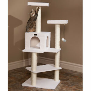 Looking for Cat Tree or scratching post.