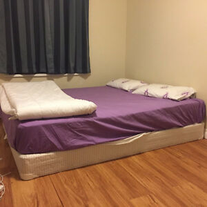 Queen Bed Frame + Queen Mattress + 2 Pillow Kingston Kingston Area image 2