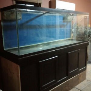 150 gallon aquarium with 75 gallon sump, stand and lid