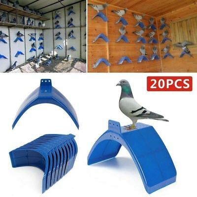 20pcs Pigeon Dove Rest Stand Frame Dwelling Supplies Frame Perche Bird Roost Set