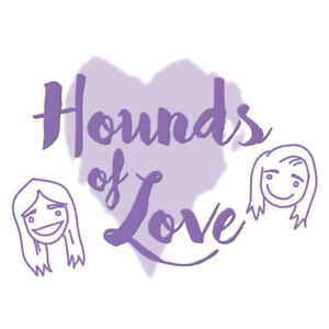 Downtown Toronto Dog Walker - HOUNDS OF LOVE