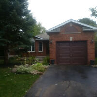 Completely renovated bungalow in Minets Point, Barrie
