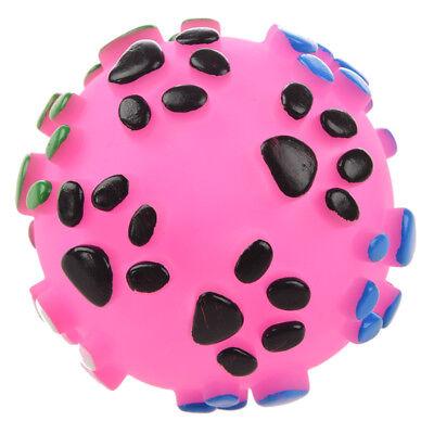 Dog Pet Training Game Toys Ball Y3V2
