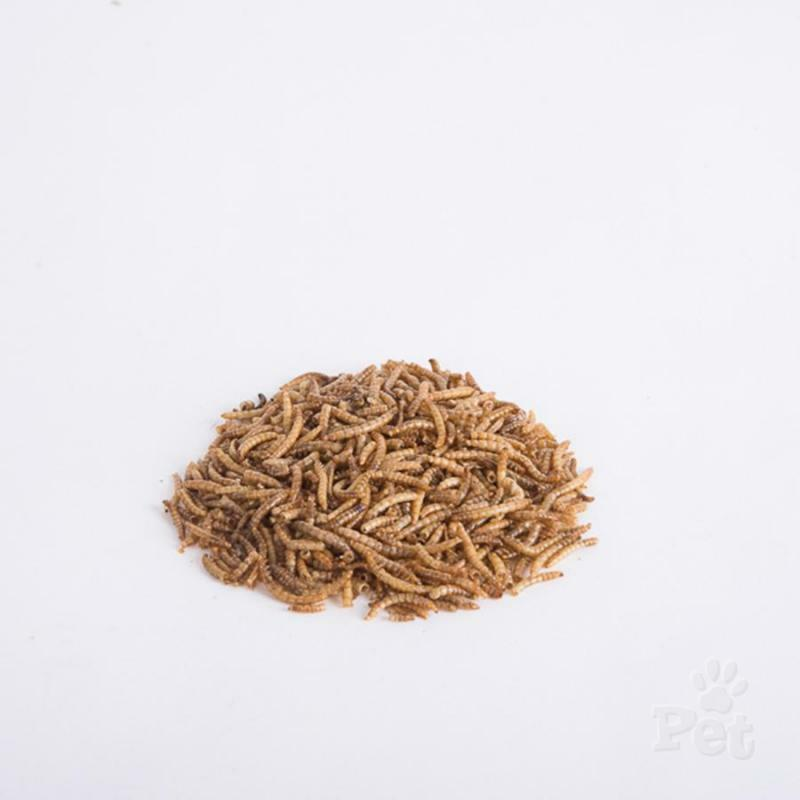 QUALITY DRIED MEALWORMS WILD BIRD MIX FOOD 10G,100G,200G,500G,1KG,2KG INC PCKG