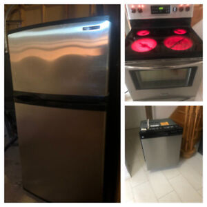 Stainless Steel Excellent Condition Fridge,Stove And Dishwasher