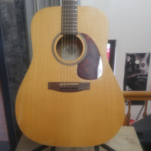 guitare.normand.seagull.yamaha.fender.instrument.musique