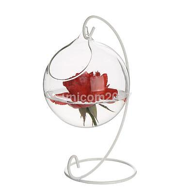 Hanging Ball Glass Flower Planter Vase Terrarium Container Hydroponic Bottle US