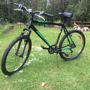 Road/trail bike