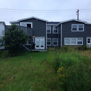 Commercial Rental & Office Condo Topsail Rd Paradise