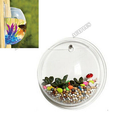 Wall Mount Fish Tank Aquarium Plant Hanging Pot Bowl Bubble Aquarium ACT
